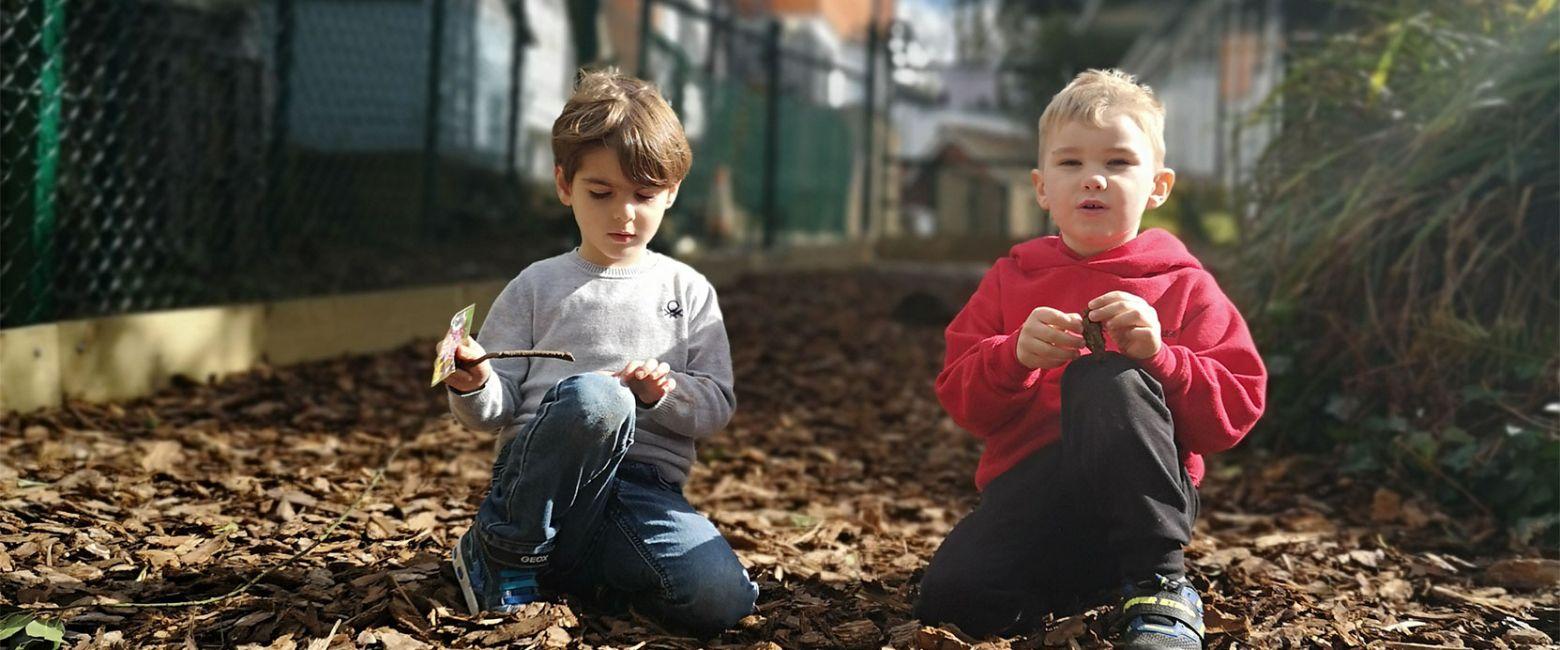Ivy Wood playtime