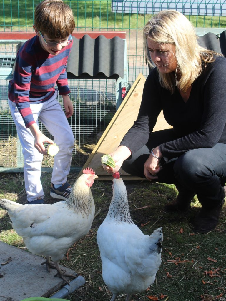 Karen In Farm With Chickens